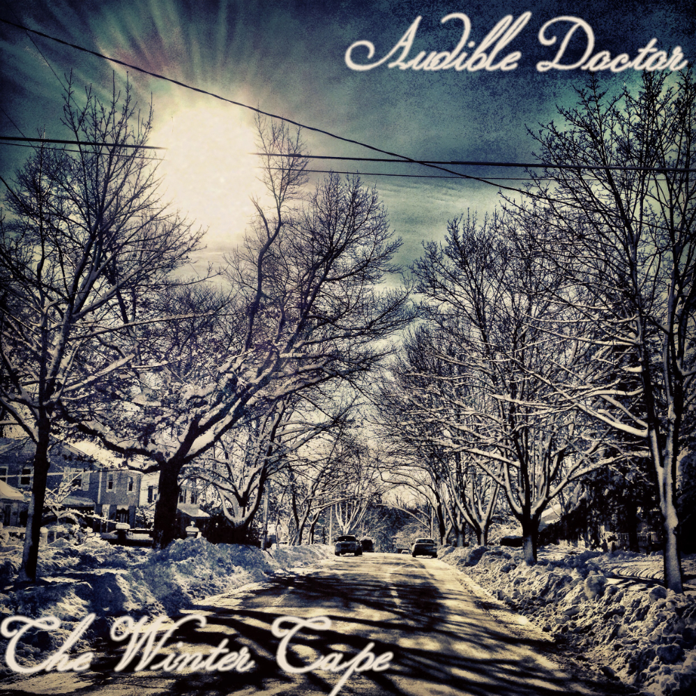 Audible Doctor – The Winter Tape and 2012 Recap